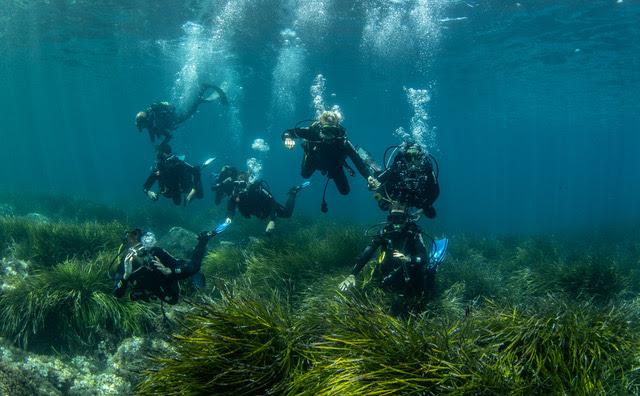 Mallorca Dive Camp