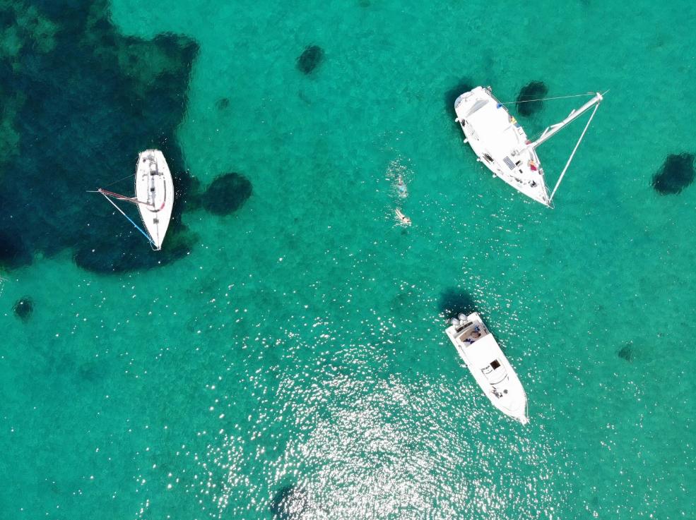 Cinco formas de disfrutar del Mar, protegiendo la vida marina
